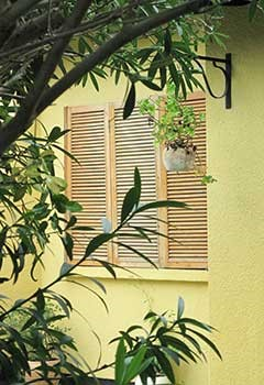 Plantation Shutters For Saratoga Hills Home